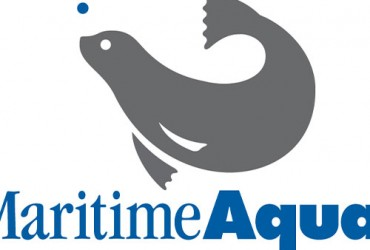 The Maritime Aquarium at Norwalk® Logo Development